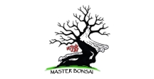 Master Bonsai di Andrea Meriggioli   PI: 01154380321 